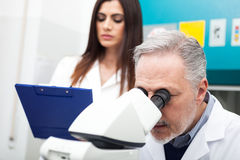 Scientist using a microscope Royalty Free Stock Photo