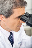 Scientist Using Microscope In Lab. Mature male scientist using microscope in laboratory Stock Photography