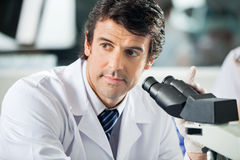 Scientist Using Microscope In Laboratory. Mid adult male scientist using microscope in laboratory Stock Image