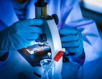 Scientist using microscope in microbiology lab for medical research or science developmen royalty free stock photography