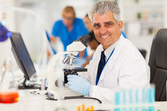 Scientist using microscope Royalty Free Stock Photo
