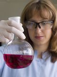 Scientist watching a sample. Woman Scientist watching a sample in test tube Royalty Free Stock Photo