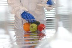 Scientist With Fruits And Vegetables Stock Photo