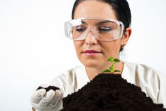 Scientist woman. In laboratory checking soil,check also my collection Scientists people Royalty Free Stock Images