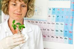 Scientist woman Stock Photography
