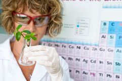 Scientist woman Royalty Free Stock Photos