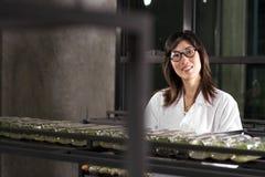 Scientist work Stock Photos