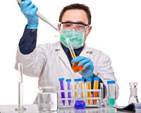 Scientist at work Royalty Free Stock Photos