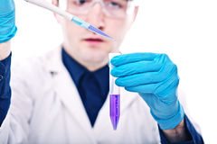 Scientist at work Royalty Free Stock Image