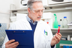 Scientist at work in a laboratory. Male scientist at work in a laboratory Royalty Free Stock Photo