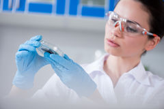 Scientist during work at modern biological laboratory. Female scientist during work at modern biological laboratory Royalty Free Stock Images