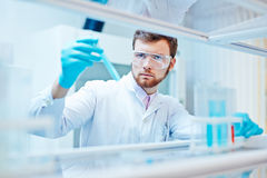 Scientist at work Royalty Free Stock Images