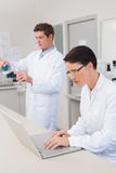 Scientist working attentively with laptop and another with beaker Royalty Free Stock Image
