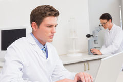 Scientist working attentively with laptop Stock Photo