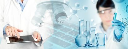 Scientist working in a chemical laboratory Royalty Free Stock Photo