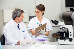 Scientist Working With Colleague In Medical Lab Stock Images