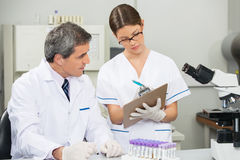 Scientist Working With Colleague In Medical Lab. Mature male scientist working with colleague in medical laboratory Royalty Free Stock Image