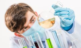 Scientist working in the lab. Examines a test tube with liquid Royalty Free Stock Photos