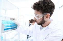Side view of focused scientist holding test tube in laboratory royalty free stock photos
