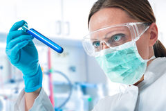 Scientist working Royalty Free Stock Image