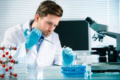 Scientist working Royalty Free Stock Images