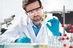 Scientist working Stock Photography