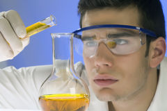 Scientist working in a laboratory Royalty Free Stock Image
