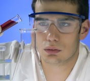 Scientist working in a laboratory Stock Images