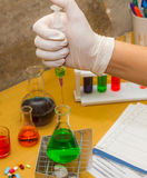 Scientist working at the laboratory. Royalty Free Stock Photography