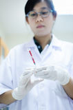 Scientist working at laboratory Stock Photography