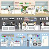 Scientist working in laboratory vector illustration. Science lab interior. Biology, Physics and Chemistry education. Concept Royalty Free Stock Image