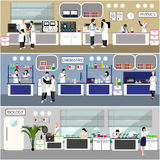 Scientist working in laboratory vector illustration. Science lab interior. Biology, Physics and Chemistry education. Concept. Male and female engineers making Stock Photography