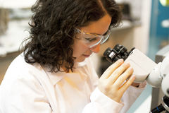 Scientist working at the laboratory Stock Image