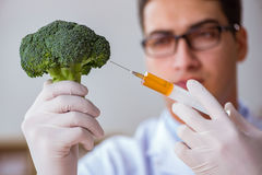 The scientist working on organic fruits and vegetables Stock Photo