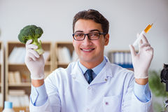 The scientist working on organic fruits and vegetables Royalty Free Stock Image