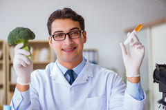 The scientist working on organic fruits and vegetables Stock Images