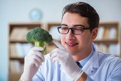 The scientist working on organic fruits and vegetables Stock Photos