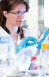 Scientist works in biological or chemical lab Stock Images