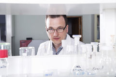 Scientist  works in chemical laboratory. Scientist works in chemical or medicine laboratory alone Stock Photography