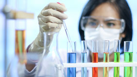 Scientist works in laboratory. Scientist works in modern biological laboratory Royalty Free Stock Photography