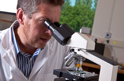 Scientist works with microscope. Scientist in white coat works with microscope Royalty Free Stock Photography