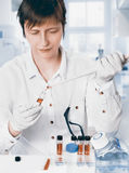 Scientist works with samples, toned image. Scientist works with scientific or medical samples in the lab, toned image Royalty Free Stock Photo