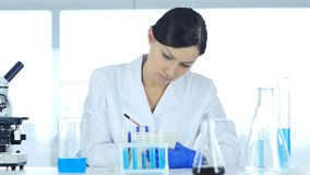 Scientist Writing Results of Research in Laboratory royalty free stock images