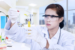 Scientist and yellow flask stock photography