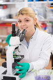 Scientist young woman using a microscope in a science Royalty Free Stock Photos