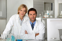Scientists Stock Photos