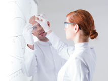 Scientists analyzing pill samples Royalty Free Stock Photo