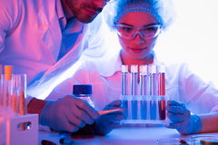 Scientists at chemical laboratory. During work stock photography