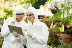 Scientists in clean suit discussing over digital tablet. Female scientists in clean suit discussing over digital tablet at greenhouse Royalty Free Stock Images