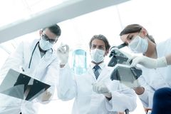 Scientists conducting research in a lab environment. Young women medical researcher looking through microscope in laboratory Royalty Free Stock Images